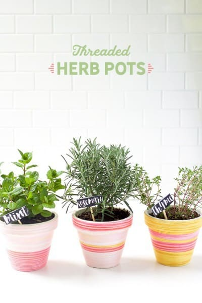 diy-herb-pots-7-of-12-copy