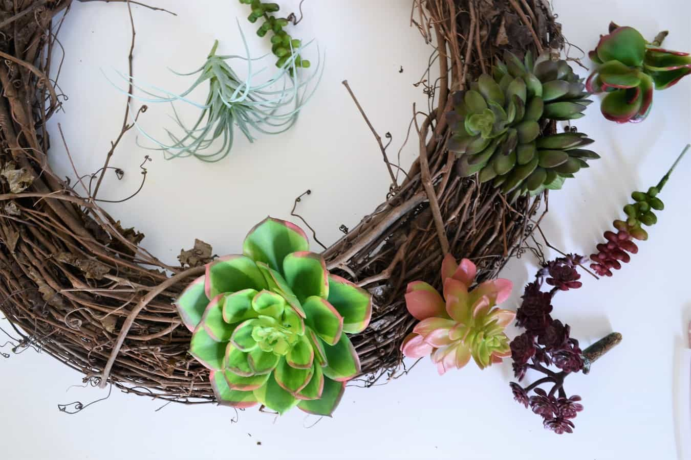 Succulent Wreath 4