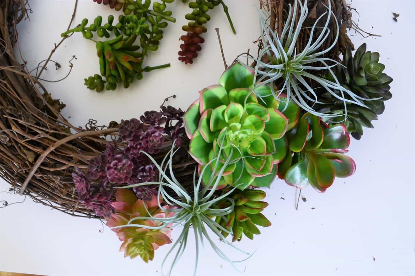 Succulent Wreath 5