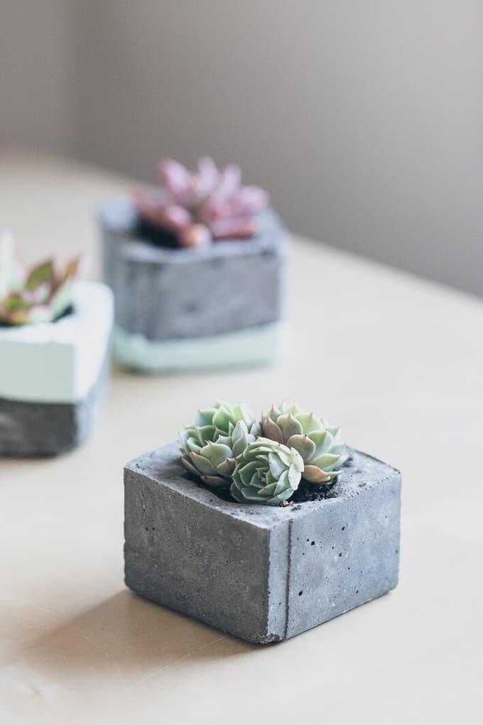 indoor planters 5