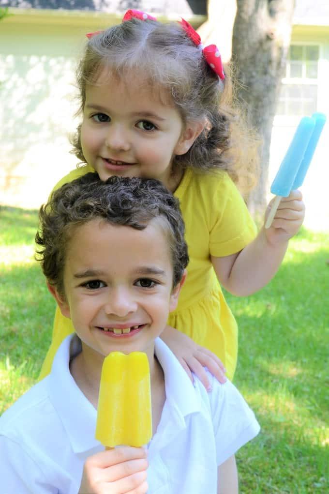 budget saver popsicles 7
