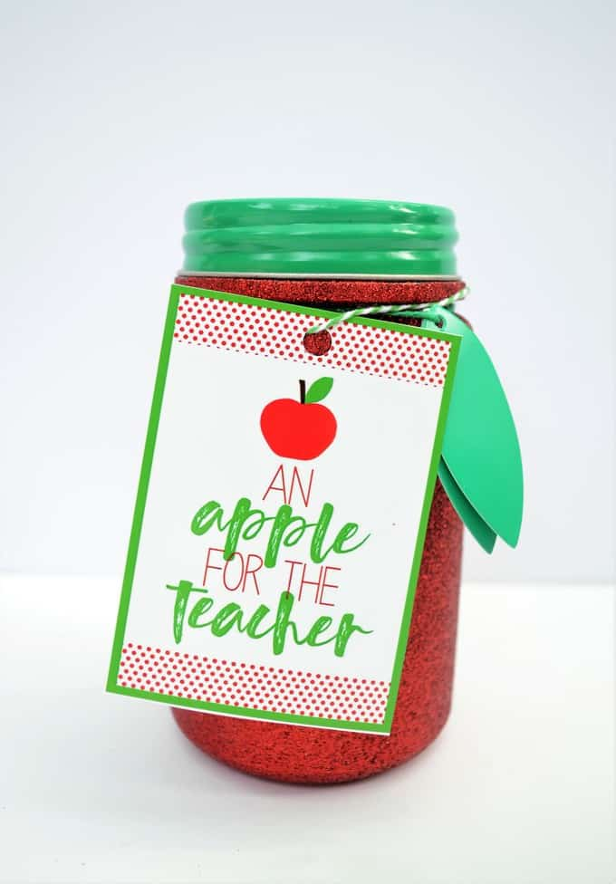 TEACHER APPRECIATION GIFT 7