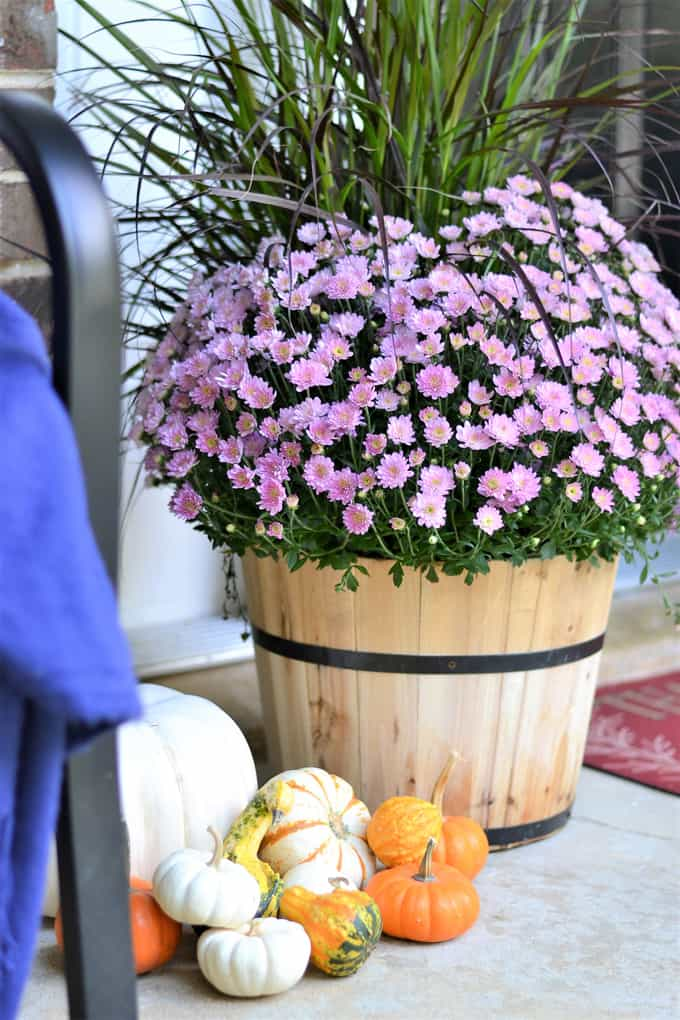 porch decor ideas lowes 5