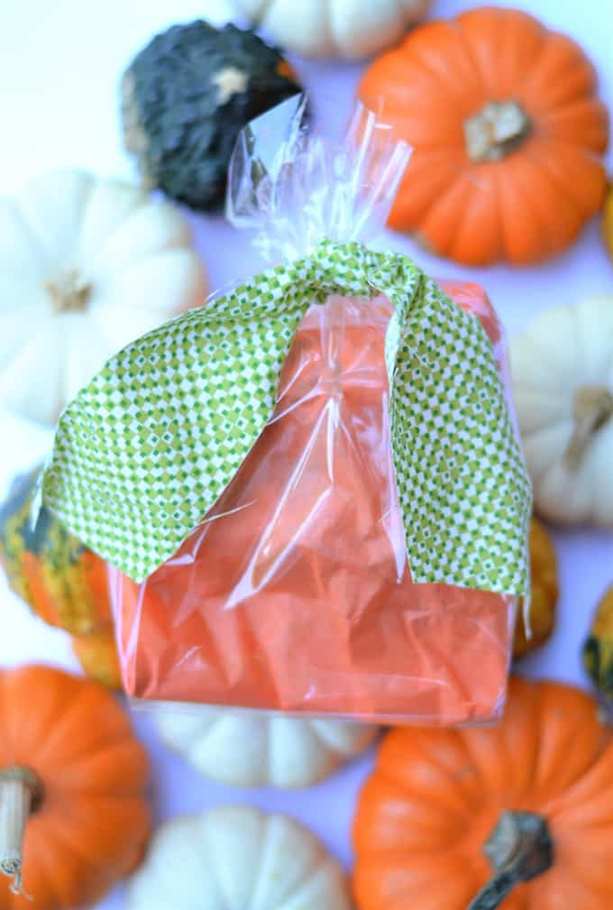 halloween Treat Bags 4