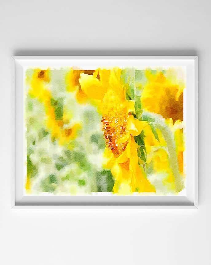 Watercolor Sunflowers & Succulents