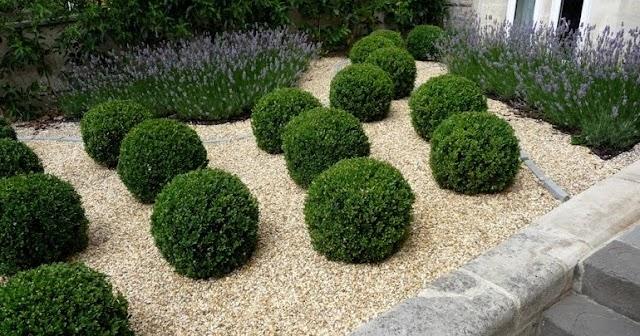 Glorious Gravel Gardens