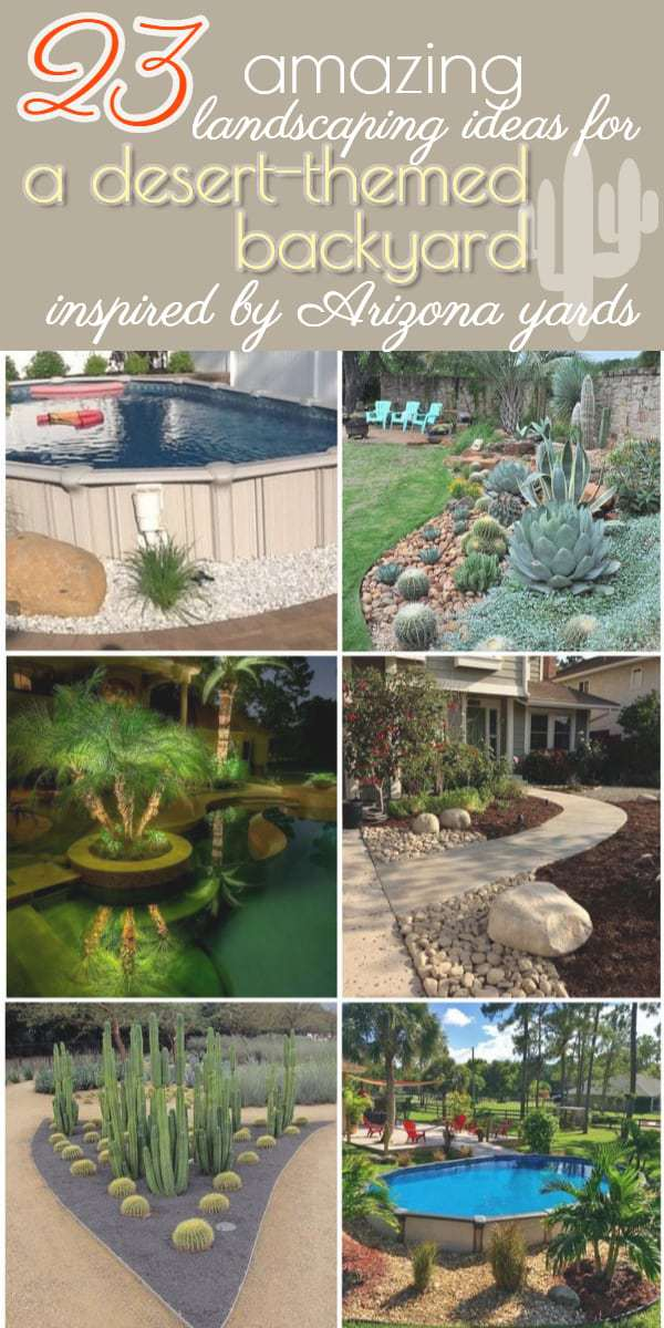 23 Arizona backyard ideas on a budget: Get inspiration for your desert-themed backyard