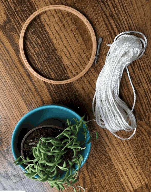 hanging planter supplies