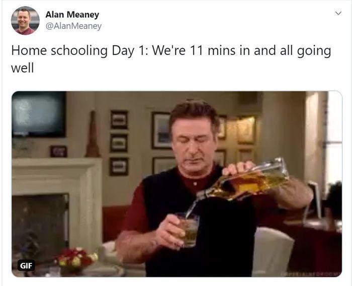 virtual learning meme